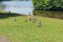 Vogel State Park, Blairsville, United States