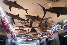International Game Fish Association, Dania Beach, United States