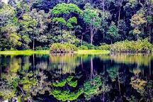 Tasek Merimbun Heritage Park, Tutong District, Brunei Darussalam
