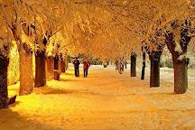 Parc La Prairie, Ifrane, Morocco