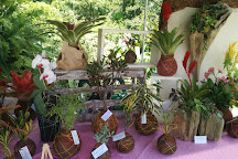 Jardines Ecologicos Topotepuy, Baruta, Venezuela