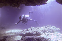 Banzai Divers Hawaii, Haleiwa, United States