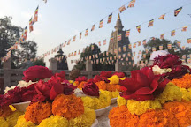 Bodhi Tree, Bodh Gaya, India