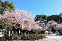 Ueno Park, Uenokoen, Japan