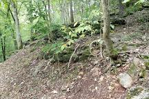 Smallin Civil War Cave, Ozark, United States