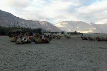 Hunder Sand Dunes, Ladakh, India