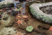 SEA Discovery Center, Poulsbo, United States