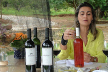 Pireneus Vinhos e Vinhedos, Cocalzinho de Goias, Brazil