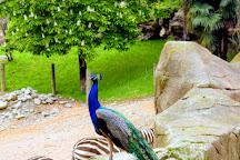 Parco Faunistico Le Cornelle, Valbrembo, Italy