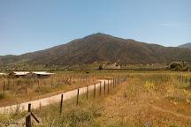 Vina Apaltagua, Santa Cruz, Chile
