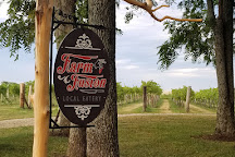 NightHawk Vineyard & Winery, Paola, United States