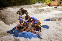 Raft One, Ducktown, United States