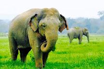 Cango Tour, Ahungalla, Sri Lanka