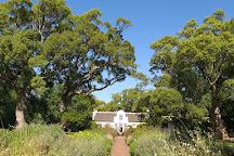 Vergelegen Estate, Somerset West, South Africa
