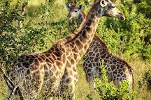 Mthethomusha Game Reserve, Malelane, South Africa
