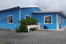 Ocean Rider Seahorse Farm, Kailua-Kona, United States