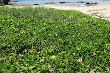 Hyakuna Beach, Shimajiri-gun, Japan