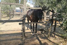 Centro Equestre Samarcanda, Volterra, Italy