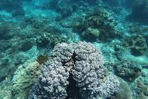 Gamat Bay, Nusa Penida, Indonesia