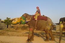 Elefriend, Amer, India