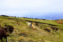Cave Hill Country Park, Belfast, United Kingdom