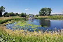 Ellis Bird Farm, Lacombe, Canada