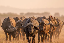 The Insight Tanzania Safaris, Moshi, Tanzania