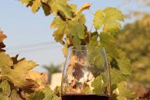 Moa Winery, Tsofar, Israel