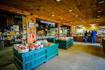 Goold Orchards, Castleton On Hudson, United States