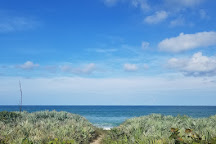Maritime Hammock Sanctuary, Melbourne Beach, United States