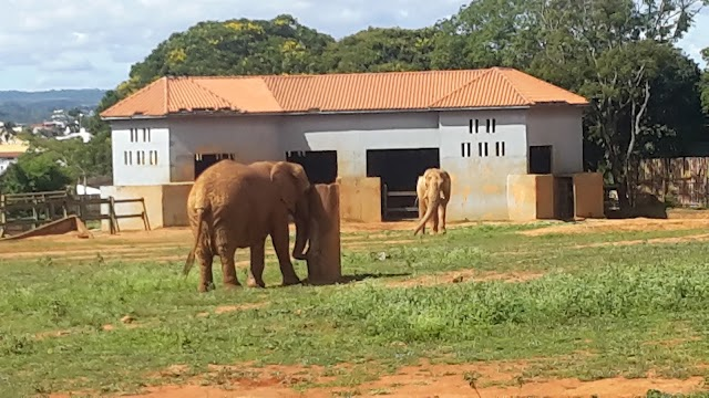 Jardim Zoologico de Brasilia