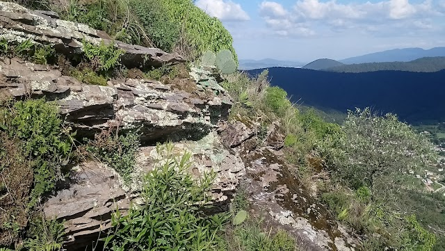 Huamango