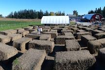 Stonehaven Farm Market, Campbellville, Canada