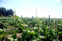 L. Mawby Vineyards, Suttons Bay, United States