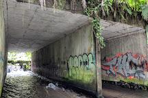 Rio Chollin, La Fortuna de San Carlos, Costa Rica