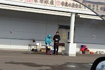 Obihiro Wholesale Market, Obihiro, Japan