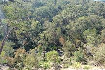 Springwood Conservation Park, Springwood, Australia