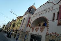 Teatrul de Arta Deva, Deva, Romania