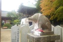 Naruto Whirlpools, Shikoku, Japan