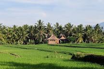 Ubud Kajeng Rice Fields Walk, Ubud, Indonesia