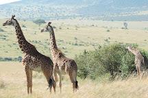 YHA Kenya Travel, Nairobi, Kenya
