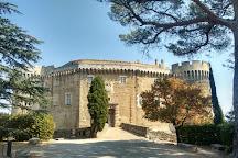 Chateau de Suze la Rousse, Suze-la-Rousse, France