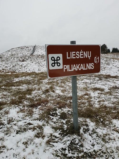 Liesėnų piliakalnis