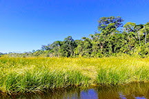 Tambopata National Reserve, Tambopata National Reserve, Peru