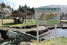 Usuzumi Park, Motosu, Japan