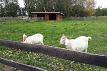 Millets Farm Centre, Frilford, United Kingdom