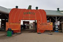 Downey's Farm Market, Caledon, Canada