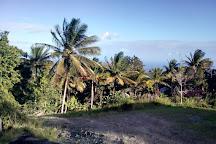 Tet Paul Nature Trail, Soufriere, St. Lucia