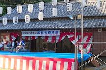Hiwasa Chelonian Museum Caretta, Minami-cho, Japan