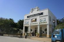 Le Jardin d'Essai du Hamma, Algiers, Algeria